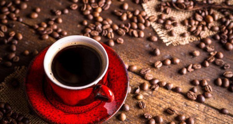 Diferencias entre café orgánico y café convencional