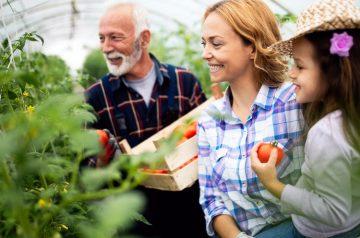 Agricultura ecológica y ecosistemas